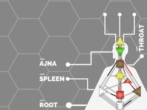 дизайн человека центры