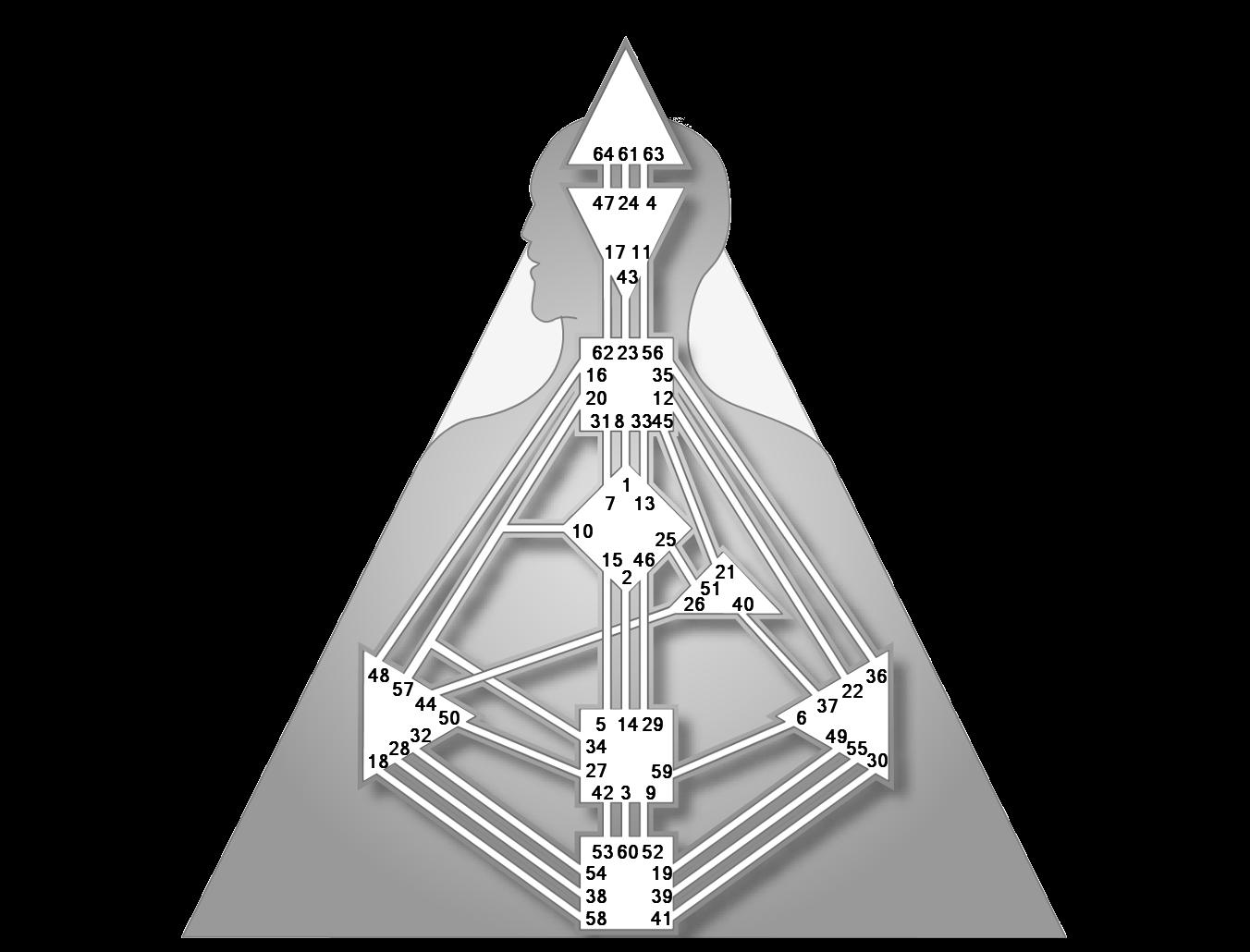 Ворота 54 дизайн человека